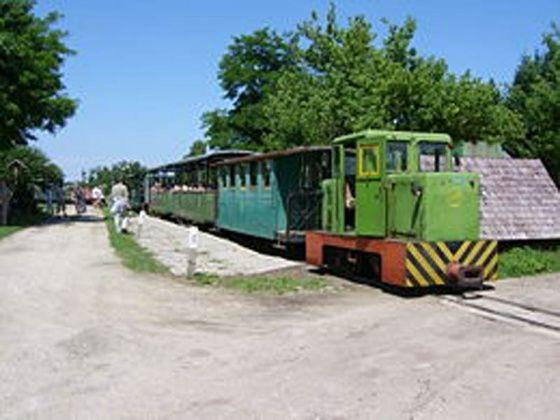 Mesztegnyői Erdei vasút, Mesztegnyő