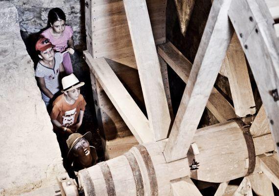 Almalomb - kulináris kitérő és találkozóhely, Hosszúhetény