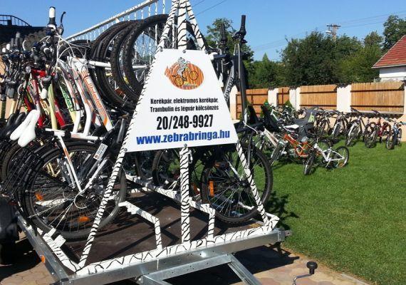 Zebra Bringa Kerékpárkölcsönző, Gárdony